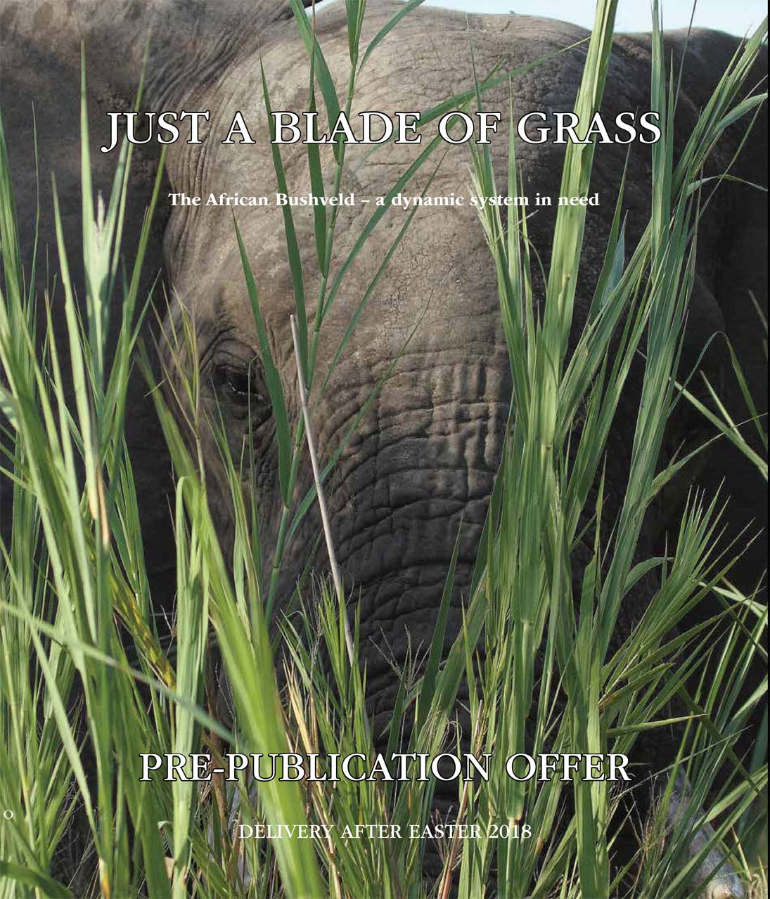 Book Review: Just a Blade of Grass. Paddy Hagelthorn & Molly Buchanan. By John Hanks.