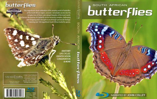 South African Butterflies, a Documentary.